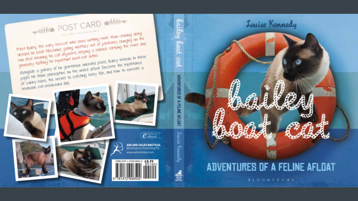Bailey Boat Cat full cover