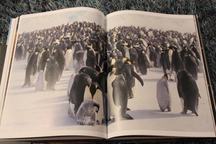 Copyright: Lonely Planet Publications LTD, 2013